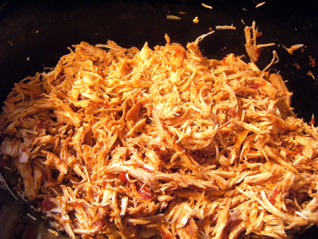 Shredded chicken made in a slow cooker, used to make shredded chicken tacos - Recipe on ComfortablyDomestic.com