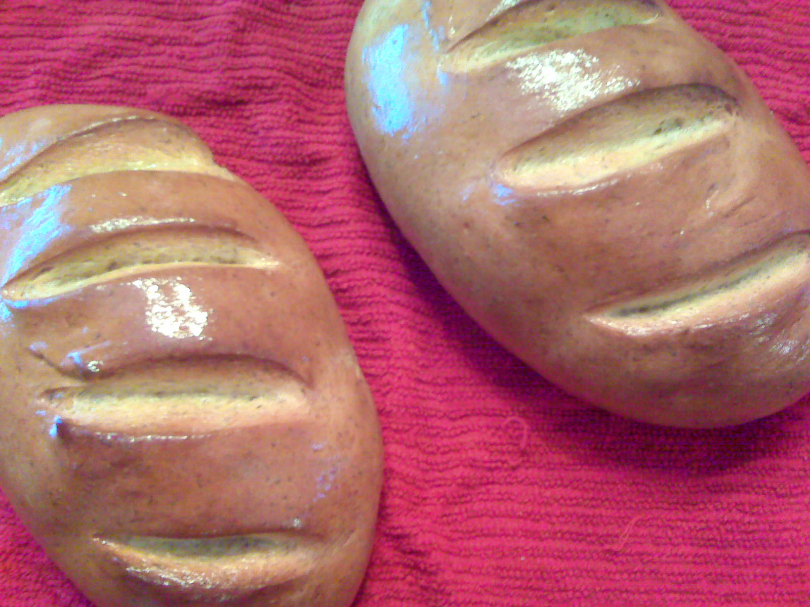 Dill-Potato-Bread is perhaps one of the easiest ways to make TWO loaves of delicious bread in 1 hour.