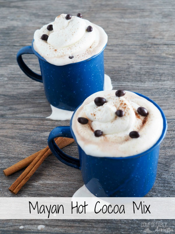 Two blue mugs of Mayan Hot Cocoa Mix with fluffy whipped cream, freshly grated cinnamon, and chocolate covered cacao nibs on top.