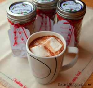 Finding last minute Christmas gifts doesn't have to be difficult or expensive! Make this recipe for Mayan hot cocoa mix, packed into a decorative mason jar! Get the recipe from ComfortablyDomestic.com