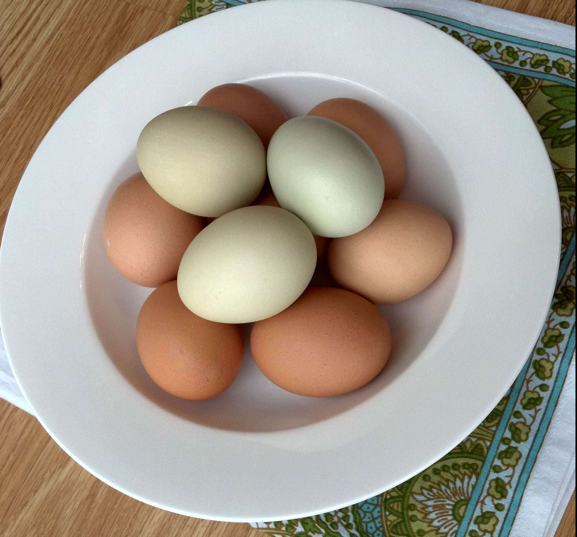 All About Eggs: Binding Stuff And Creamy Fluff