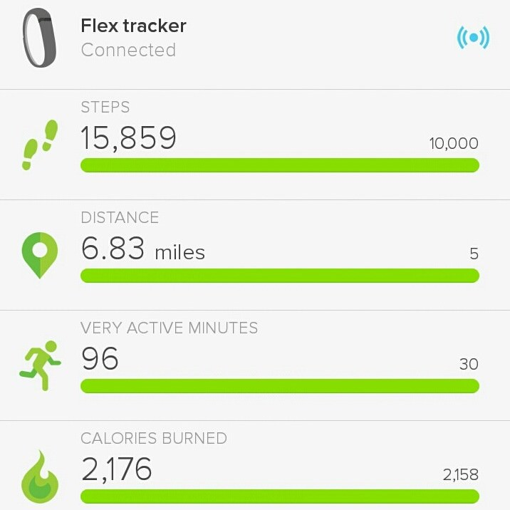 FitBit Obsession