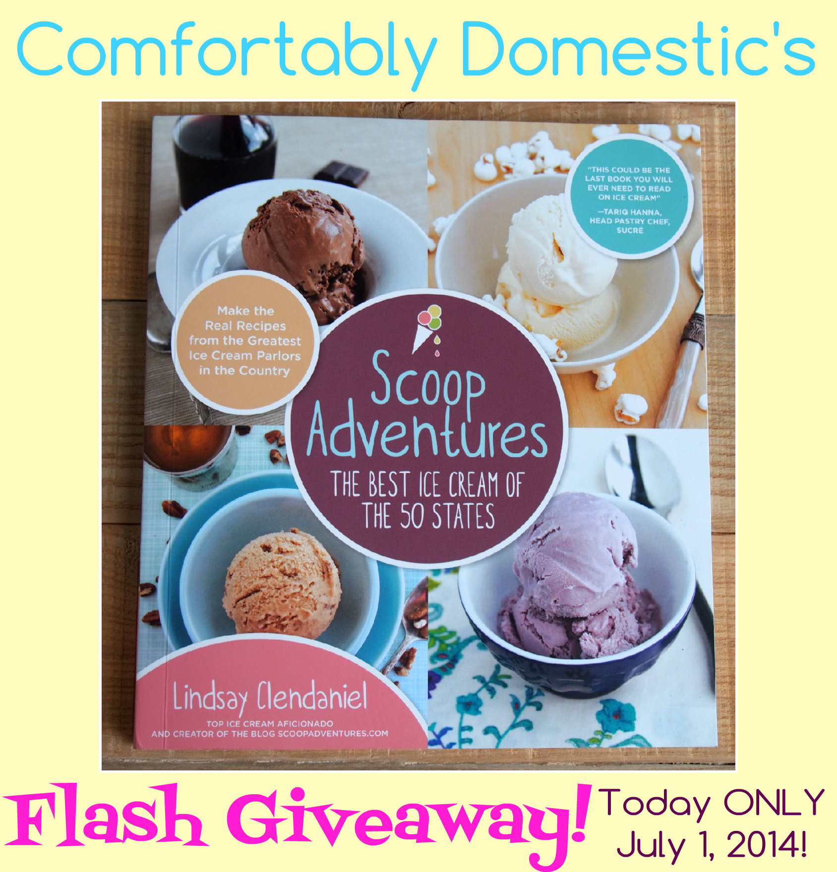 Comfortably Domestic's Scoop Adventures FLASH Giveaway! ONLY July 1, 2014